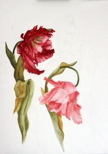 Aakvarellikynät ja tavallinen akvarelli-